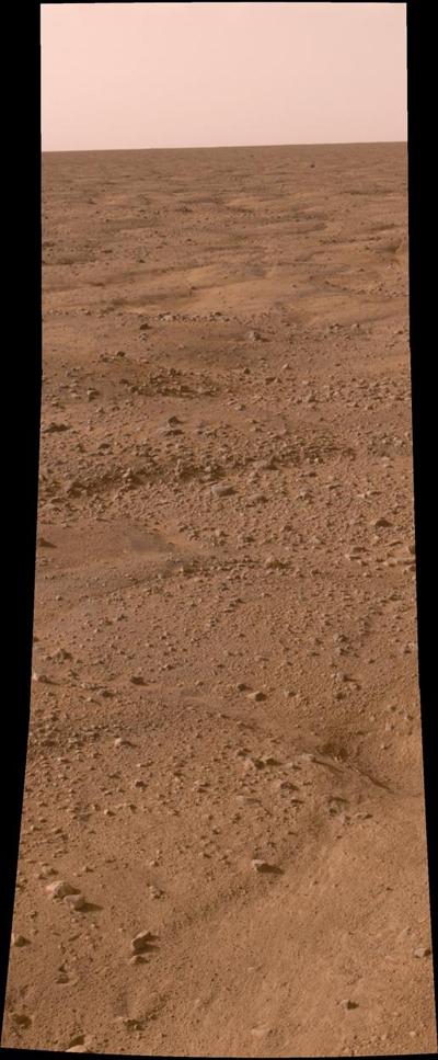 Foto: Phoenix Mars Lander Aufnahme #1